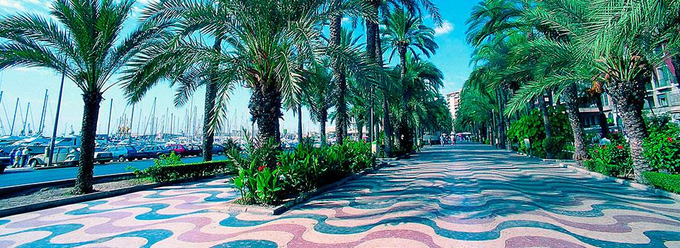 Guest-House-Alicante-06